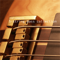 realsamples_-_5-String_Bass_Collection