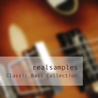 realsamples_-_Classic_Bass_Collection