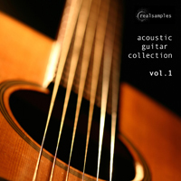 realsamples_-_Acoustic_Guitar_Collection_Vol1