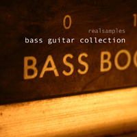 realsamples_-_Bass_Guitar_Collection