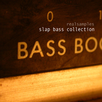 realsamples_-_Slap_Bass_Collection